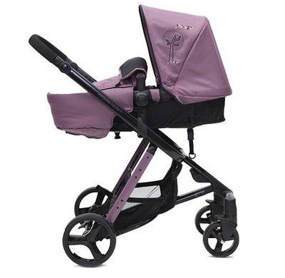 бебешка количка X-Point CANGAROO виолетова